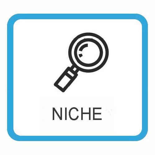 ICON NICHE